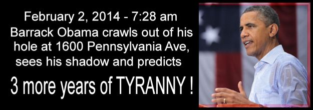 Obama Shadow - 3 More Years of Tyranny